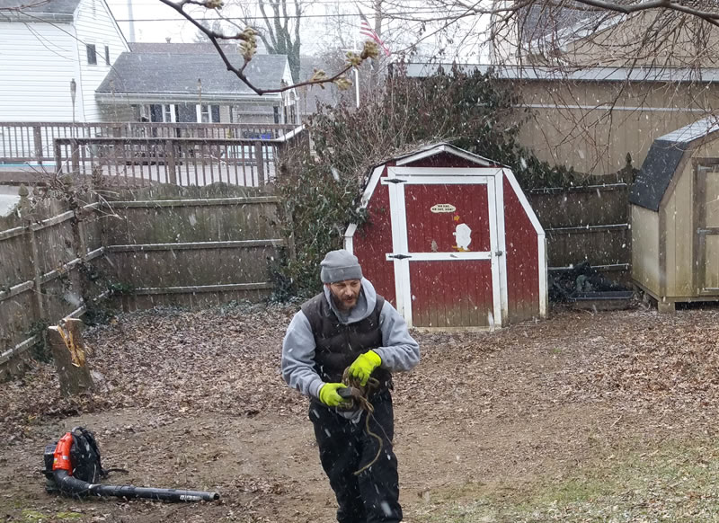 south-jersey-winter-yard-leaf-cleanup-branch-removal-quote