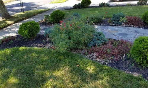 nj-flower-bed-cleanup-mulching-south-jersey