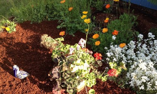 weeding-mulching-flowerbeds-south-jersey